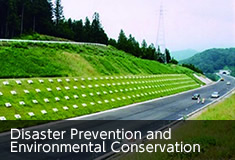 Disaster Prevention and Environmental Conservation