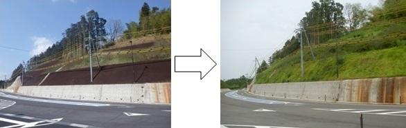 酸性水の対策およびサンダーグリーン工法で緑の斜面が完成します。