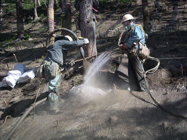 連続繊維補強土の築造状況